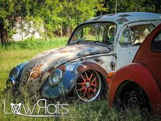 Slammed Vw beetles