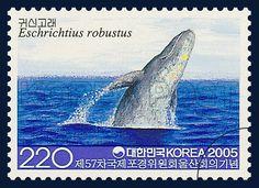 57th Annual Meeting of the International Whaling Commission, Ulsan 2005, Gray Whale, marine life, blue, gray, 2005 5 27, 제57차 국제포경위원회 울산회의 기념, 2005년 5월 27일, 2438, 귀신고래, postage 우표