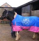 rain sheet Horse Rugs, Equestrian, Rain, Horses, Outdoor Decor, Animals, Home Decor, Rain Fall, Animales