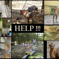 Please don't let the animals suffer in your zoos