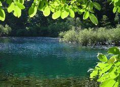 A VIDA NOS FALA !: #Avidanosfala - Há beleza em tudo,porém,nos con...