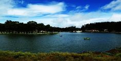 Scenic views of the Yercaud Lake
