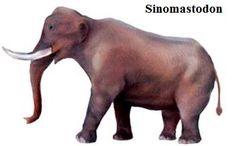 Resultado de imagen para sinomastodon