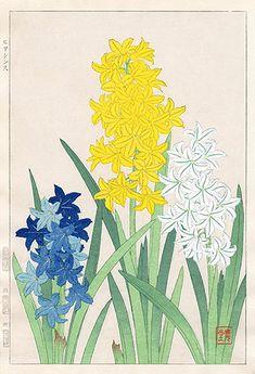 Hyacinth SKJ17 $125 Shodo Kawarazaki Spring Flower Woodblock Prints