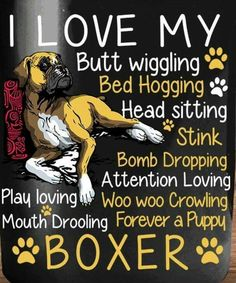 I love my forever a puppy boxer! Source by tribblethree The post I love my forever a puppy boxer! appeared first on Floyd Pet Supplies. Boxer Dog Quotes, Boxer Dogs Facts, Boxer Mom, Boxer And Baby, Dog Baby, I Love Dogs, Puppy Love, Love Me Forever, Cesar Millan