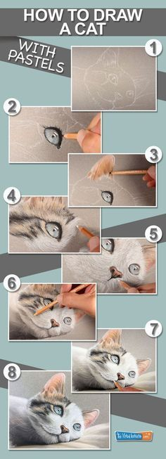 How to draw a cat with pastel pencils. Comment dessiner un chat avec des crayons pastel. Chalk Pastel Art, Soft Pastel Art, Pastel Artwork, Pastel Drawing, Chalk Pastels, Oil Pastels, Crayons Pastel, Pastel Pencils, Coloured Pencils