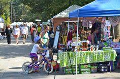 Art, Music & Fun at Pine LakeFest 2013