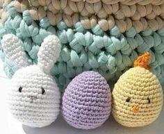 bunny chick