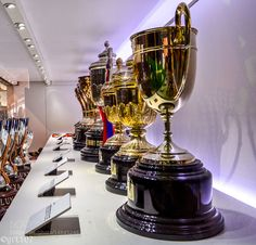 Trophies in Camp Nou Stadium Barcelona by grt107