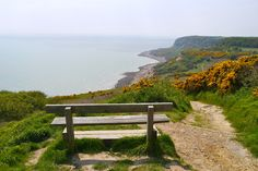 The Hastings Country Park Nature Reserve