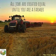 Farm Quotes Extraordinary Pinr Wo On Farm Animals  Pinterest