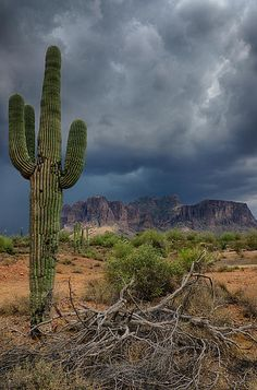Southwest Monsoon Skies...reminds me of home in Arizona....sigh...