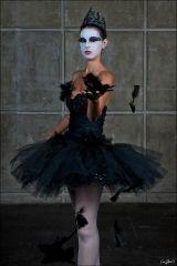 black swan costume - Google Search