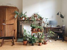 charlotte's indoor garden, antwerp