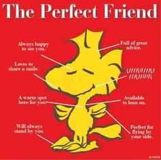 snoopy and woodstock images friendship Peanuts Cartoon, Peanuts Snoopy, Snoopy Cartoon, Snoopy Und Woodstock, Woodstock Bird, Snoopy Comics, Friends Poster, Snoopy Wallpaper, Joe Cool