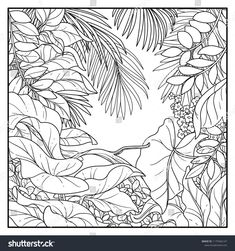 Find Jungle Black Contour Line Drawing Coloring stock images in HD and millions of other royalty-free stock photos, illustrations and vectors in the Shutterstock collection. Contour Line Drawing, Leaf Drawing, Plant Drawing, Animal Line Drawings, Art Drawings, Illustration Jungle, Art Tropical, Tropical Garden, Jungle Drawing