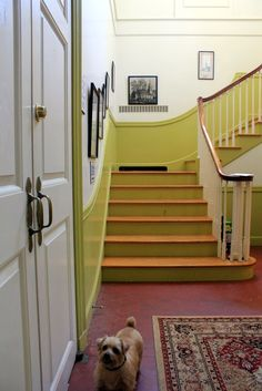 Muffy Aldrich: love the painted stairs and floor.