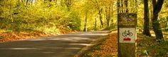 Die schoenste Radreise in Masuren fuehrt durch den Weg!