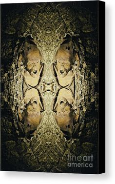 THE MAN PRESERVED IN SALT #PhotosByZulma #Zulma #mummy #preserved #Salt #Salzburg #Austria #art #Canvas   https://fineartamerica.com/products/man-preserved-in-salt-photos-by-zulma-canvas-print.html