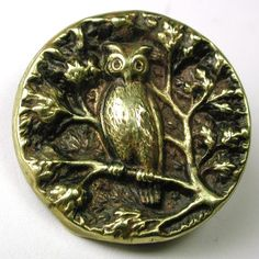 Antique Brass Picture Button Owl on Branch Up in A Tree | eBay