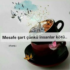 Meaningful Words, I Am Awesome, Tea Cups, Tableware, Pictures, Quotes, Sentences, Tumbler, Articles