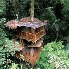 Awesome tree house... I always wanted to live in something like this!