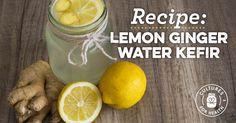 Lemon-Ginger Water Kefir Recipe