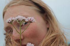 Stud Earrings, Flowers, Stud Earring, Royal Icing Flowers, Flower, Earring Studs, Florals, Floral, Blossoms