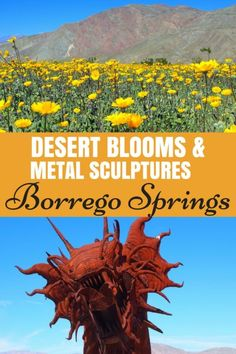 Viewing Desert Blooms & Metal Art at Borrego Springs, California - The World Is A Book