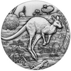 Australian Kangaroo 2oz Silver coin antiqued Australia 2016