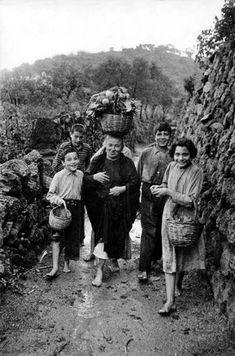Henri Cartier-Bresson. Campania. Ischia. Panza. 1952