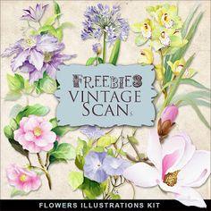 Freebies Flores Ilustraciones