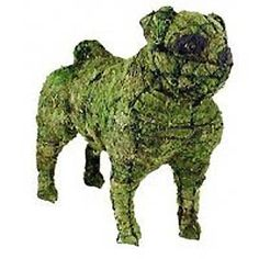 The Paws Mahal - Pug Topiary Dog Sculpture, $72.99 (http://www.thepawsmahal.com/pug-topiary-dog-sculpture/)