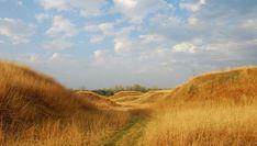 Image result for sky plains