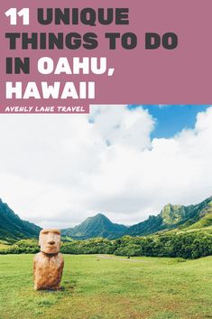 Best Things to do in Oahu (You Probably Haven't Heard of) - Avenly Lane Travel Waikiki Beach, Honolulu Hawaii, Kauai, Hawaii 2017, Blue Hawaii, Aloha Hawaii, Oahu Vacation, Vacation Trips, Vacation Spots