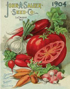 Ideas for vintage flowers pattern seed catalogs Vintage Diy, Vintage Labels, Vintage Signs, Vintage Postcards, Vintage Images, Poster Vintage, Garden Catalogs, Seed Catalogs, Flower Catalogs