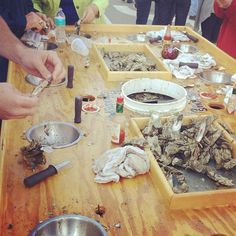 Folly Beach oyster shucking