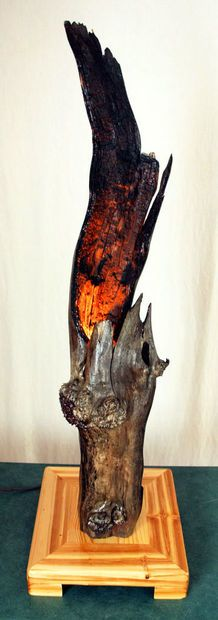 Turn a burned-out tree branch into a gorgeous, glowing lamp.