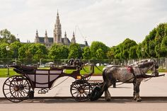 Horse Carriage, Vienna