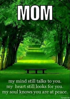 I miss you mom poems 2019 mom in heaven poems from daughter son on mothers day. ❤️ Mommy heaven poems for kids who miss their mommy badly sayings quotes wishes. I Miss You Dad, Miss You Mom, Tu Me Manques Papa, Mom In Heaven, Father In Heaven, Dad In Heaven Birthday, Happy Birthday, Heavenly Father, Beau Message