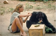 """Jane Goodall. National Geographic, 1974.      """"You cannot get through a single day without having an impact on the world around you. What you do makes a difference, and you have to decide what kind of difference you want to make."""""""