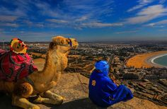 8 Days tour from Tangier to Marrakech via Chefchaouen Fes Meknes and Casablanca , Visit Morocco, Morocco Travel, Morocco Beach, Marrakech, Tangier, Casablanca, Cities, Desert Tour, Kenya Travel