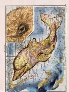 Dolphin-shaped map of Mexico by Fernando Vicente Sánchez Map Projects, Recycled Art Projects, Art Et Illustration, Illustrations, Map Crafts, Art Carte, Map Artwork, Map Painting, Ouvrages D'art