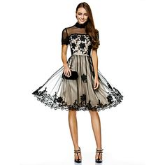 Cocktail Party / Company Party Dress-Champagne A-line High Neck Knee-length Tulle – USD $ 89.99
