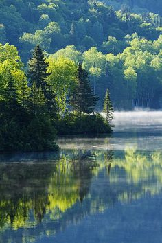 Summer Morning in Mont Tremblant National Park, Canada