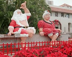 Merry Christmas in Hawaii. Mele Kalikimaka from Hawaii. Song, video and pictures in Hawaii.