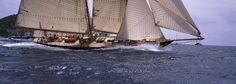 Sailboat in the sea, Schooner, Antigua, Antigua and Barbuda