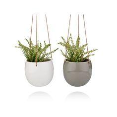 keramik und porzellan hema wohnzimmer pinterest. Black Bedroom Furniture Sets. Home Design Ideas