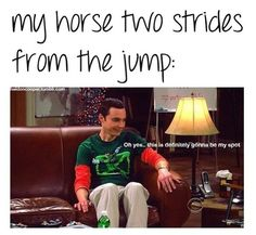 Oh yes... This is my horse. Jumpers with green horses will understand ;)