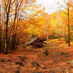 """How beautiful!  #fall #barn #fallcolors"" Photo taken by @countrylivingmag on Instagram, pinned via the InstaPin iOS App! http://www.instapinapp.com (09/30/2015)"